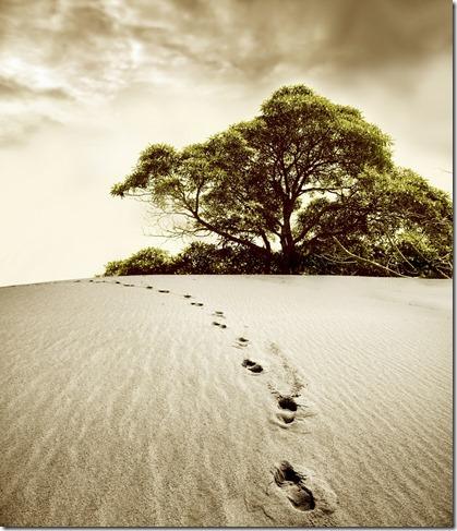 歩めば歩むだけ、足跡は残る。
